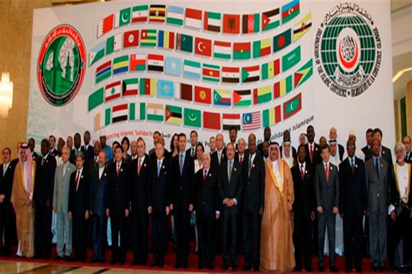 OIC urges New Delhi to allow rights commission to visit Kashmir | KNO